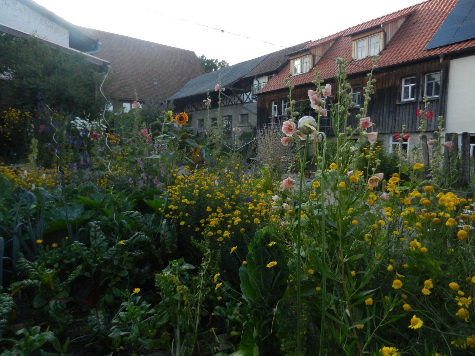 Üppige Blütenpracht des Bauerngartens mit Haus im Hintergrund