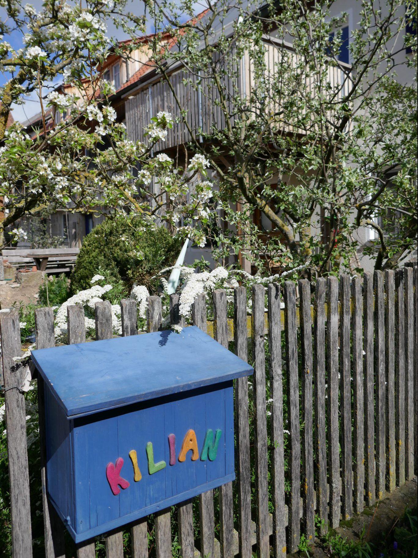 Blau bemalter Briefkasten am Zaun unseres Hofes mit blühenden Bäumen und Pflanzen im Hintergrund